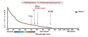 melanin-graph-300x125